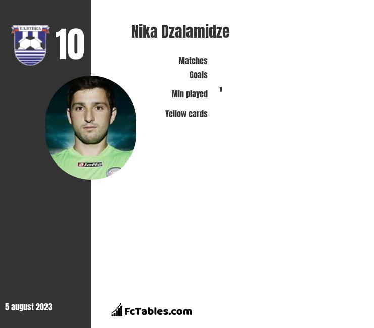 Nika Dzalamidze infographic