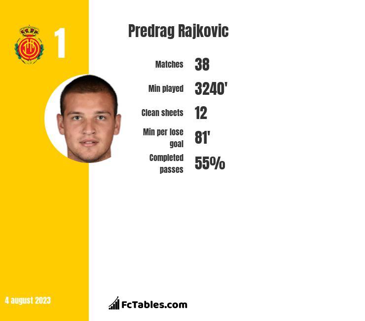 Predrag Rajkovic infographic