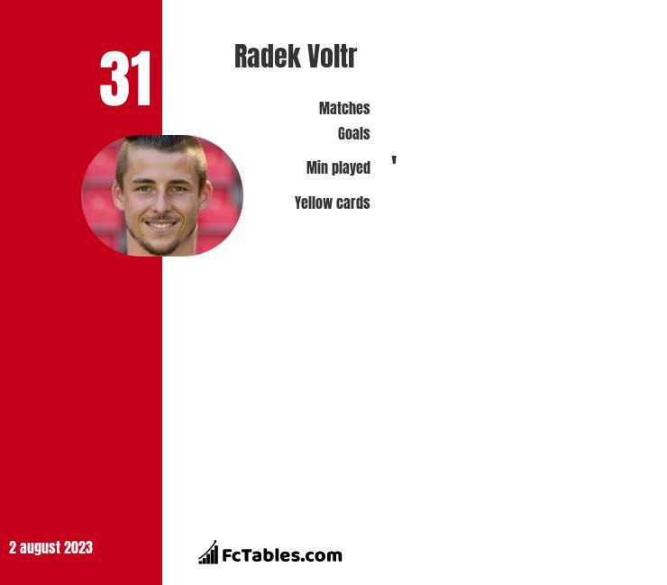 Radek Voltr infographic