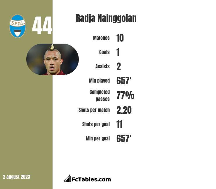 Radja Nainggolan infographic