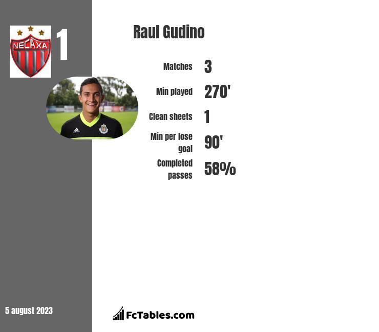 Raul Gudino infographic