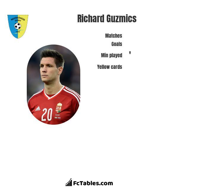 Richard Guzmics infographic