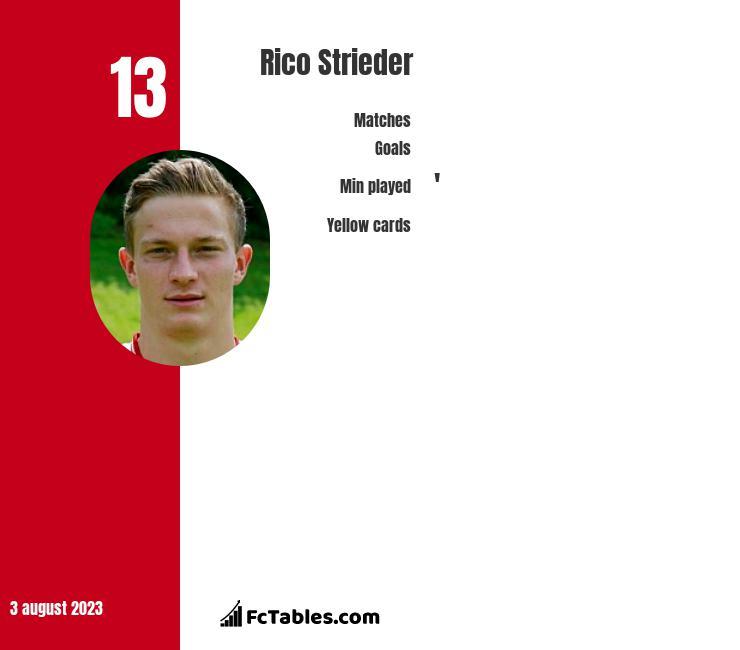Rico Strieder infographic