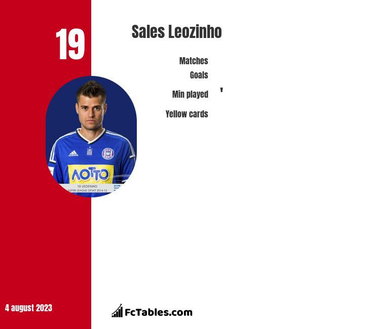Sales Leozinho infographic