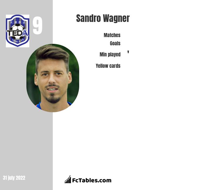 Sandro Wagner infographic