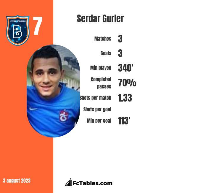Serdar Gurler infographic