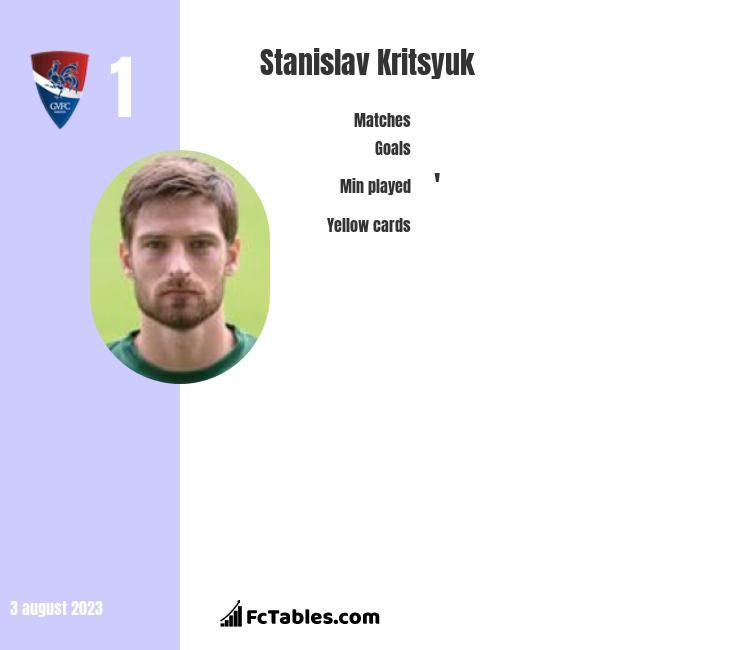 Stanislav Kritsyuk infographic
