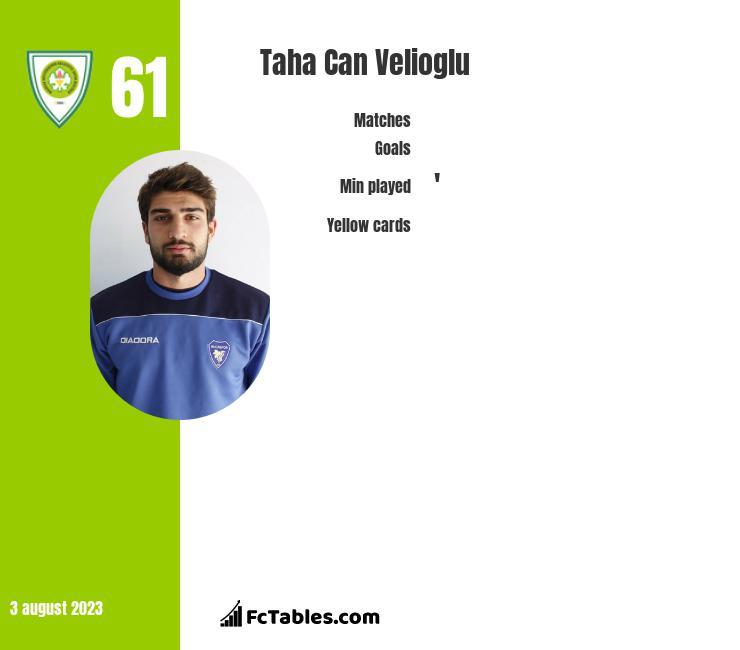 Taha Can Velioglu infographic