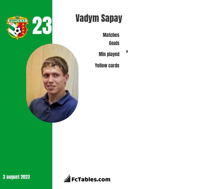 Vadym Sapay infographic