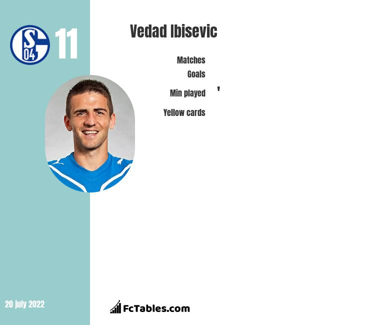 Vedad Ibisevic infographic
