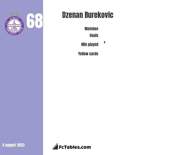 Dzenan Burekovic infographic