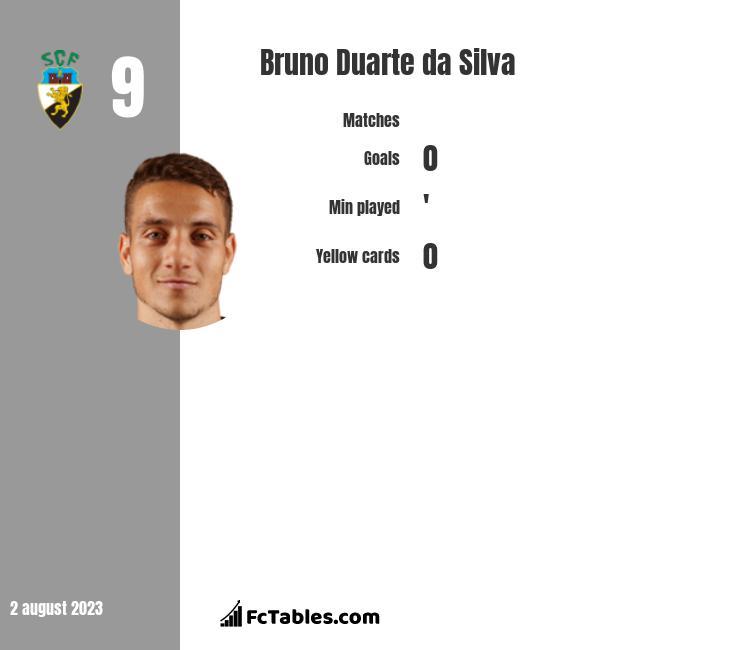 Bruno Duarte da Silva infographic