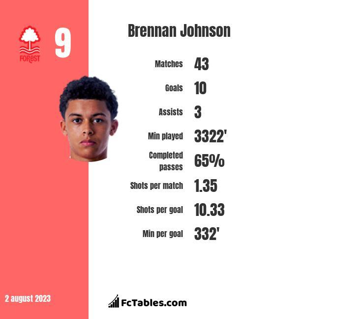 Brennan Johnson infographic