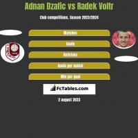 Adnan Dzafic vs Radek Voltr h2h player stats