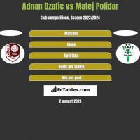 Adnan Dzafic vs Matej Polidar h2h player stats