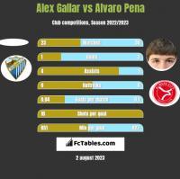 Alex Gallar vs Alvaro Pena h2h player stats