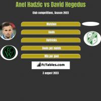 Anel Hadzic vs David Hegedus h2h player stats