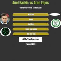 Anel Hadzic vs Aron Fejos h2h player stats