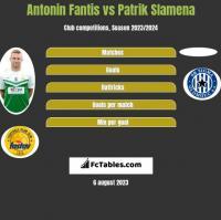 Antonin Fantis vs Patrik Slamena h2h player stats