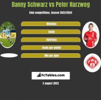 Danny Schwarz vs Peter Kurzweg h2h player stats