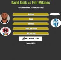 David Bicik vs Petr Mikulec h2h player stats