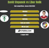 David Stepanek vs Libor Holik h2h player stats
