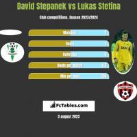 David Stepanek vs Lukas Stetina h2h player stats