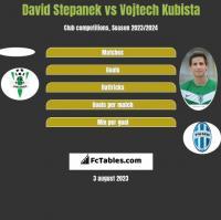 David Stepanek vs Vojtech Kubista h2h player stats