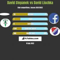 David Stepanek vs David Lischka h2h player stats