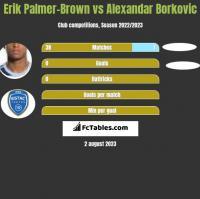 Erik Palmer-Brown vs Alexandar Borkovic h2h player stats