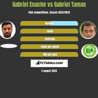 Gabriel Enache vs Gabriel Tamas h2h player stats