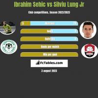 Ibrahim Sehic vs Silviu Lung Jr h2h player stats