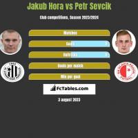 Jakub Hora vs Petr Sevcik h2h player stats