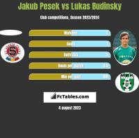 Jakub Pesek vs Lukas Budinsky h2h player stats
