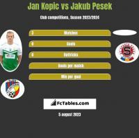 Jan Kopic vs Jakub Pesek h2h player stats