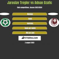 Jaroslav Tregler vs Adnan Dzafic h2h player stats