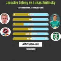 Jaroslav Zeleny vs Lukas Budinsky h2h player stats