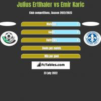 Julius Ertlhaler vs Emir Karic h2h player stats