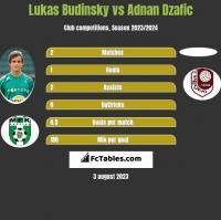Lukas Budinsky vs Adnan Dzafic h2h player stats