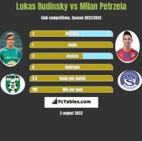 Lukas Budinsky vs Milan Petrzela h2h player stats