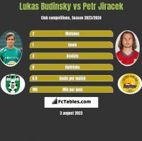 Lukas Budinsky vs Petr Jiracek h2h player stats