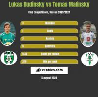 Lukas Budinsky vs Tomas Malinsky h2h player stats