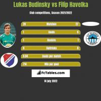 Lukas Budinsky vs Filip Havelka h2h player stats