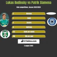 Lukas Budinsky vs Patrik Slamena h2h player stats