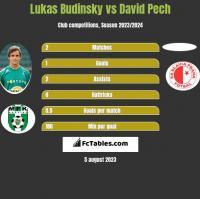 Lukas Budinsky vs David Pech h2h player stats