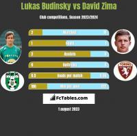 Lukas Budinsky vs David Zima h2h player stats