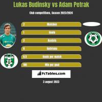 Lukas Budinsky vs Adam Petrak h2h player stats
