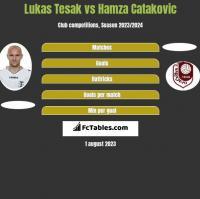 Lukas Tesak vs Hamza Catakovic h2h player stats
