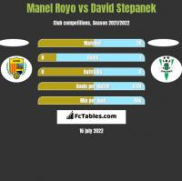 Manel Royo vs David Stepanek h2h player stats