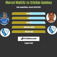 Marcel Maltritz vs Cristian Gamboa h2h player stats